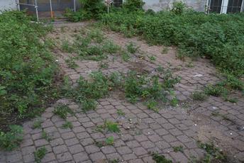 Gartenbau Langenfeld gartenlandschaftsbau berger gmbh in langenfeld